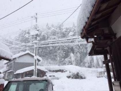 関西・東北の雪事情⛄