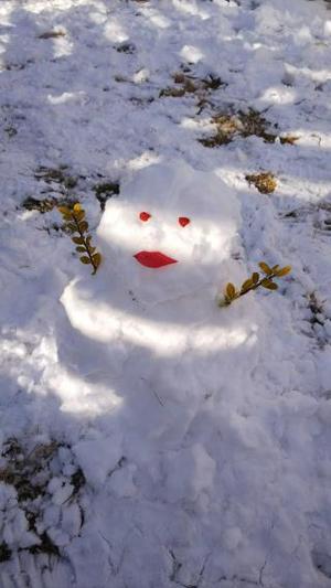 W320Q75_雪だるま.jpg